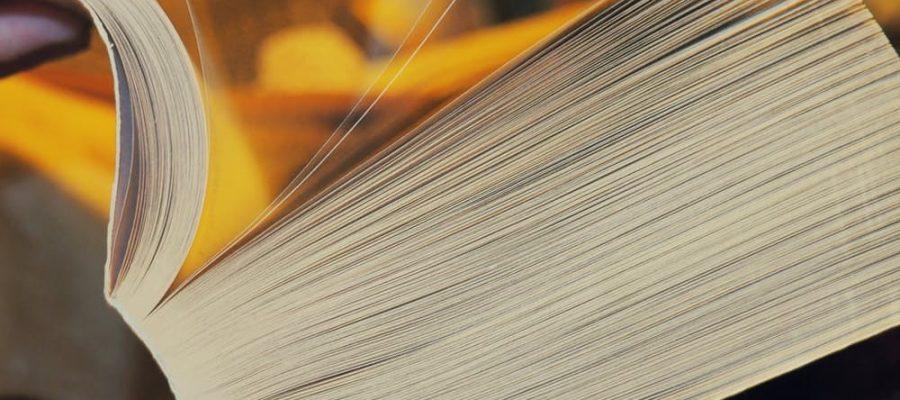Shopping - Ratgeber pexels-photo-93519-900x400 Die beliebtesten Onlineangebote für Kinder- und Jugendbücher