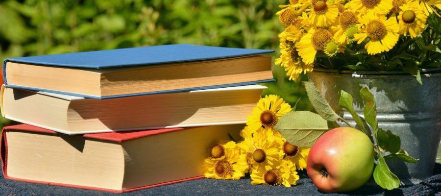 Shopping - Ratgeber books-1757734_1920-900x400 Aktuelle Buch Neuheiten versandkostenfrei bestellen