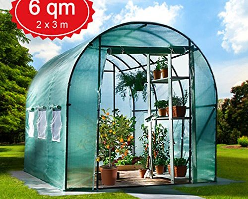 Shopping - Ratgeber 6m-gewchshaus-mit-stahlfundament-garten-treibhaus-tomatenhaus-pflanzenhaus-500x400 Im eigenen Gewächshaus Gemüse anbauen