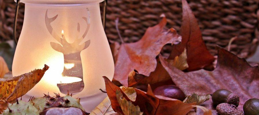 Shopping - Ratgeber autumn-mood-1716252_1920-900x400 Geniessen Sie die farbenfrohe Jahreszeit mit Herbst-Deko